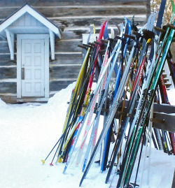 Cross Country Skis Nordic Skis The House Com >> Equipment For First Time Cross Country Skiers